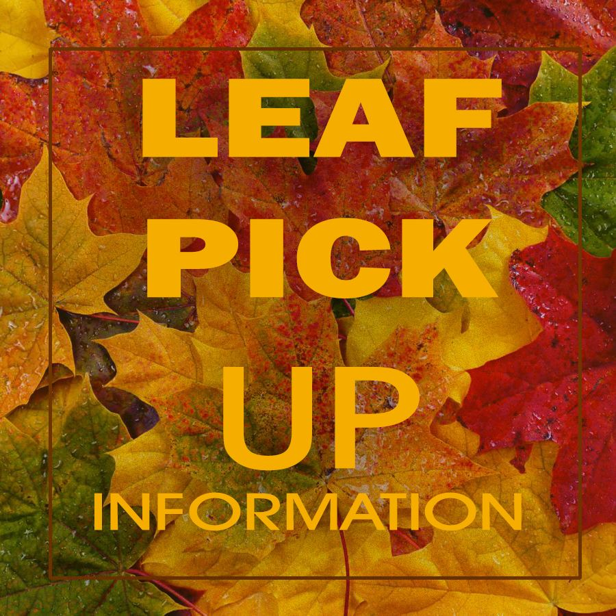 LEAF-PICK-UP 1X1